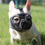 jyhy dog muzzles