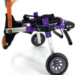 sylphid dog wheelchairs