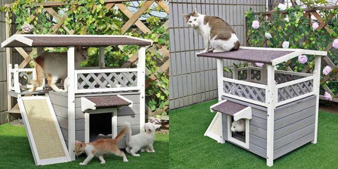 Best Outdoor Cat Houses of 2021