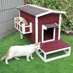petshift cat houses