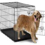 oxgold dog crate