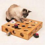 smartcat pick
