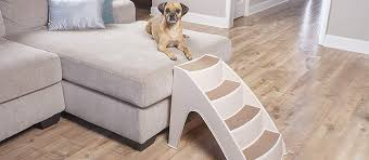 Best Pet Stairs for Dogs in 2021