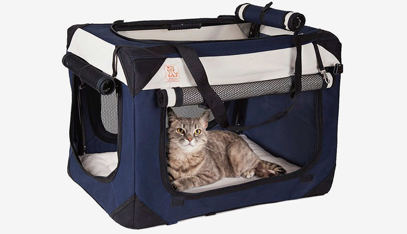 Best Cat Carriers of 2021