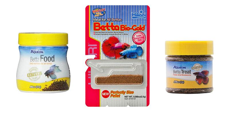 Best Betta Foods of 2021