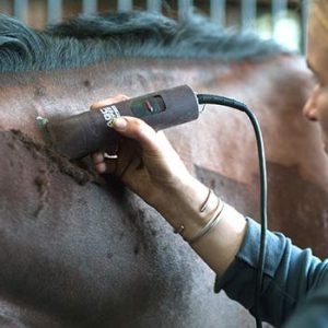 Best Horse Clippers of 2021