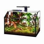 aqueron shrimp tank