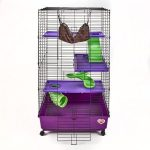kaytee my first pet cage
