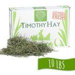 small pet hay